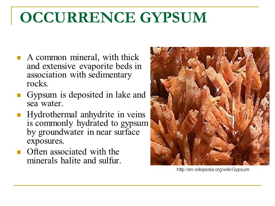 OCCURRENCE GYPSUM A common mineral, with thick and extensive evaporite beds in association with sedimentary rocks. Gypsum is deposited in lake and sea