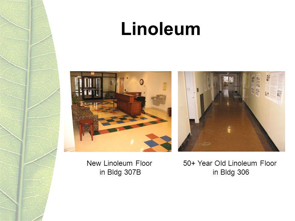 Linoleum New Linoleum Floor in Bldg 307B 50+ Year Old Linoleum Floor in Bldg 306