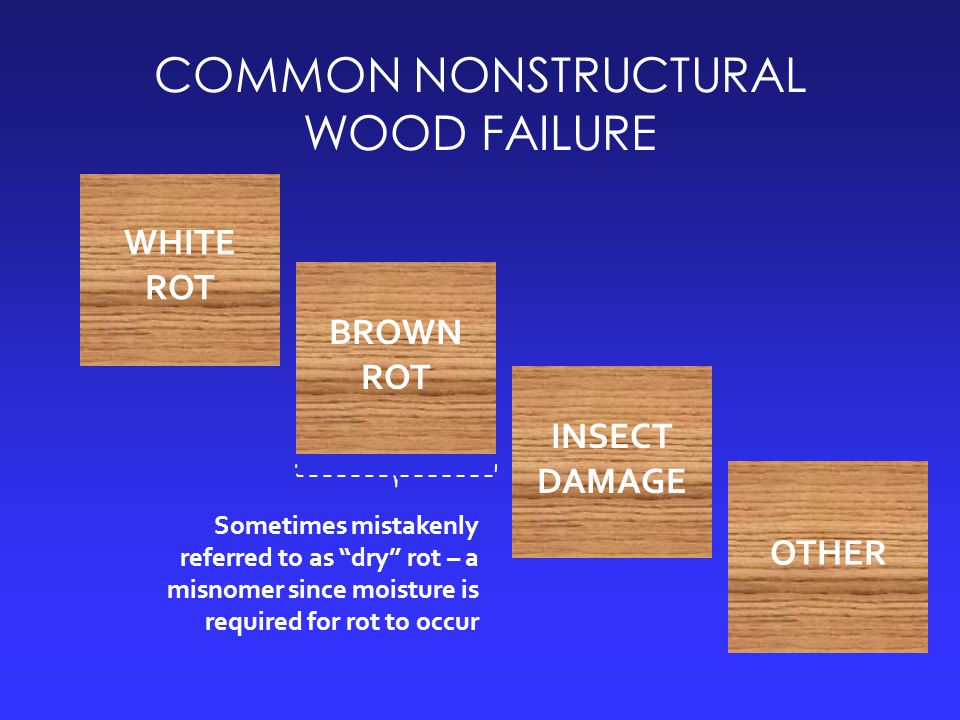 COMMON NONSTRUCTURAL WOOD FAILURE WHITE ROT BROWN ROT INSECT DAMAGE OTHER Sometimes mistakenly referred to as dry rot – a misnomer since moisture is required for rot to occur