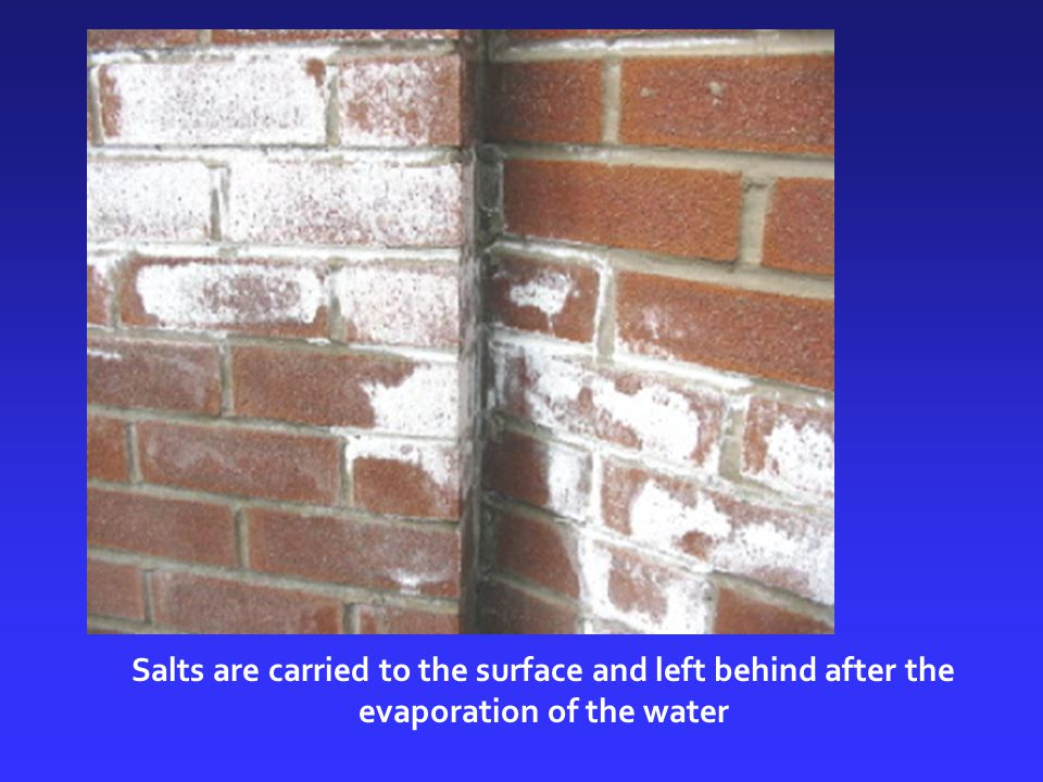 Salts are carried to the surface and left behind after the evaporation of the water