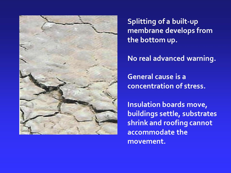 Splitting of a built-up membrane develops from the bottom up.
