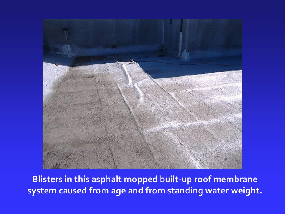 Blisters in this asphalt mopped built-up roof membrane system caused from age and from standing water weight.