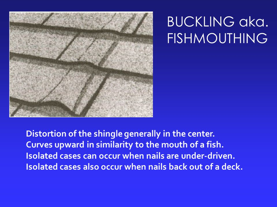 BUCKLING aka. FISHMOUTHING Distortion of the shingle generally in the center. Curves upward in similarity to the mouth of a fish. Isolated cases can o