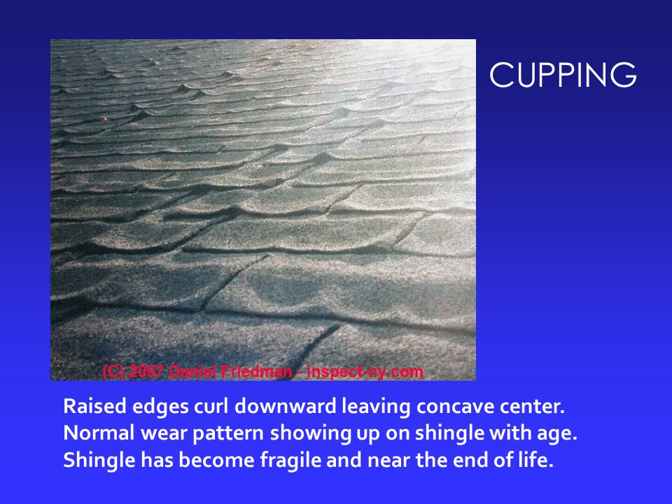 CUPPING Raised edges curl downward leaving concave center. Normal wear pattern showing up on shingle with age. Shingle has become fragile and near the