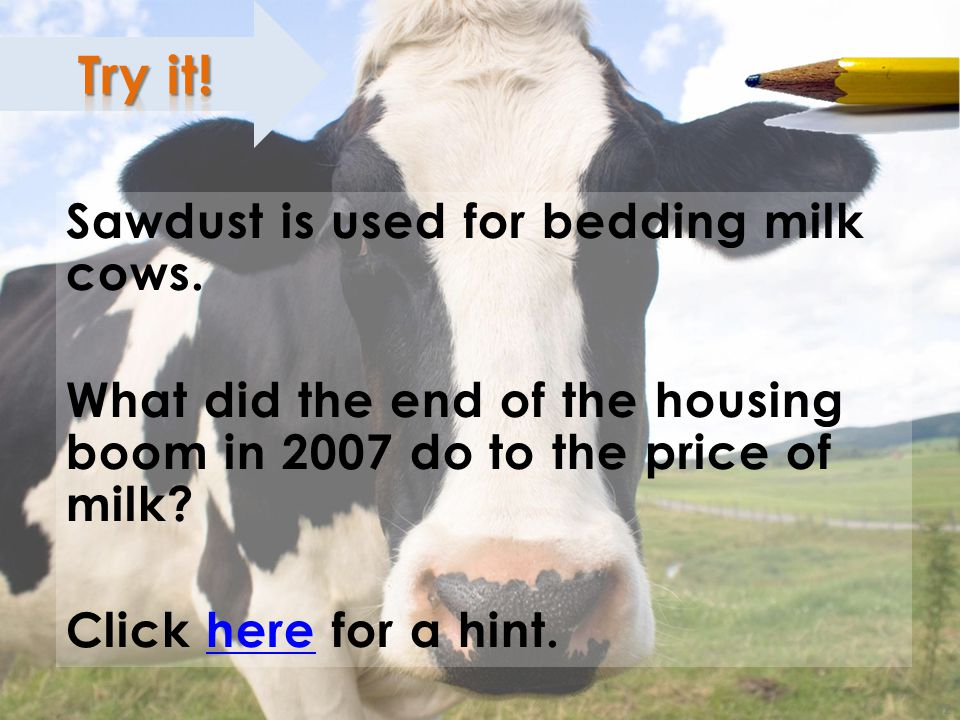 12 ; Sawdust is used for bedding milk cows. What did the end of the housing boom in 2007 do to the price of milk? Click here for a hint.here