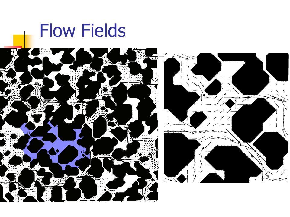 Flow Fields
