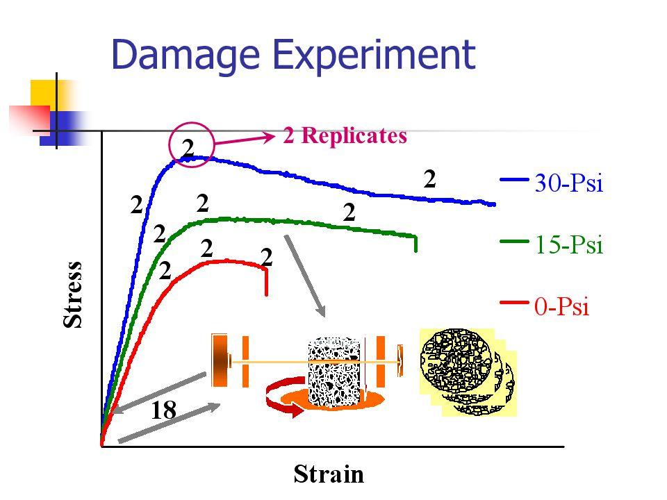 Damage Experiment 2 Replicates