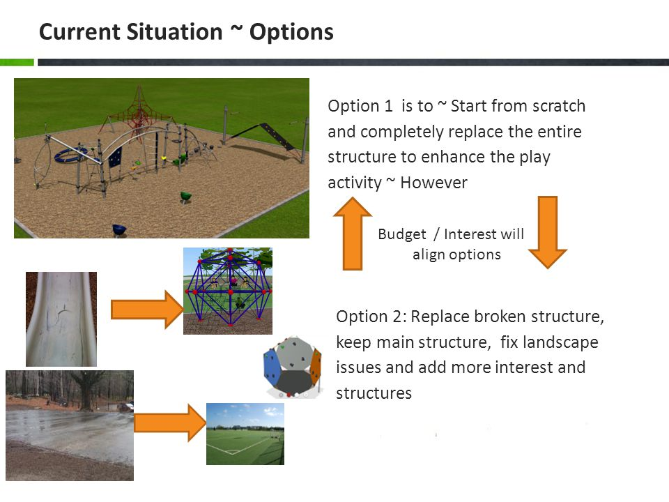Summary of Overall Project/Goal PrioritiesEstimate* All assumes community involvement Fix Drainage/Hardscape Issues$10-$20k Remove Asphalt/Turf$10k* assumes we have someone remove asphalt and use recycled turf from universities Replace/Improve Play Structures$25k -$75k* depends on options/full or partial Walk and Paver Fix/Expansion$10k-$25K Basketball Court Expansion$10-$25k Correct Gym Exit /Slope$10K TOTAL $75K-$165K Initial Target was to raise $100K