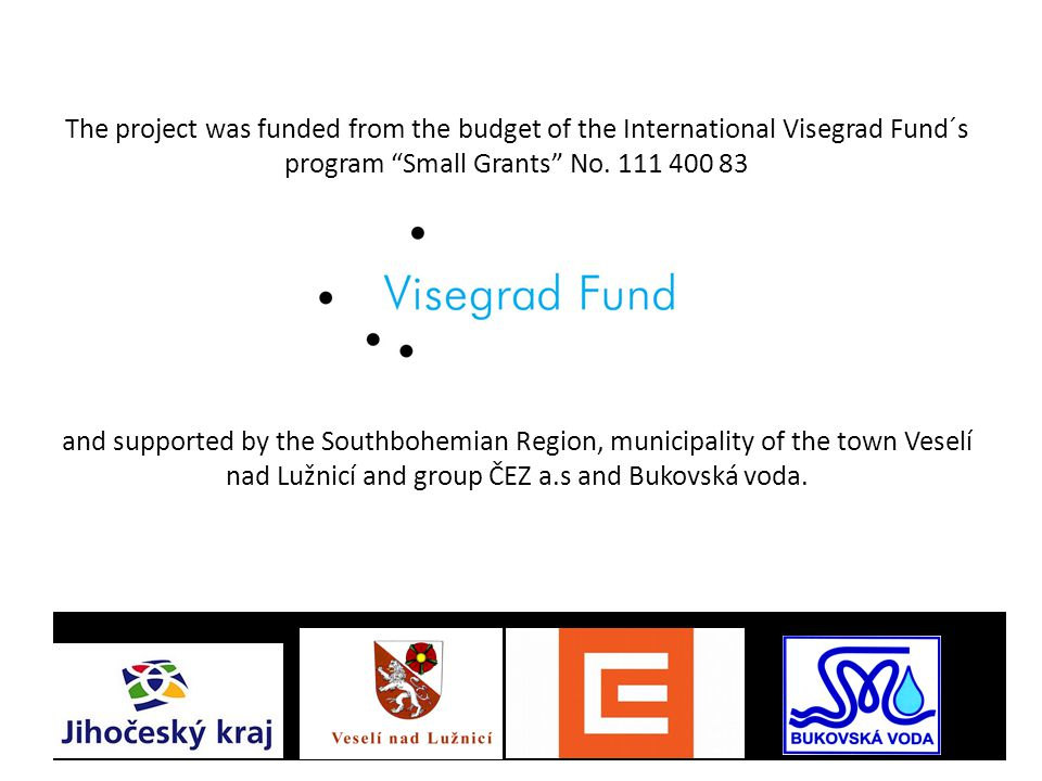 "The project was funded from the budget of the International Visegrad Fund´s program ""Small Grants"" No. 111 400 83 and supported by the Southbohemian R"