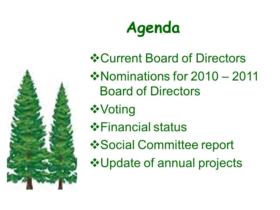 Agenda  Current Board of Directors  Nominations for 2010 – 2011 Board of Directors  Voting  Financial status  Social Committee report  Update of annual projects