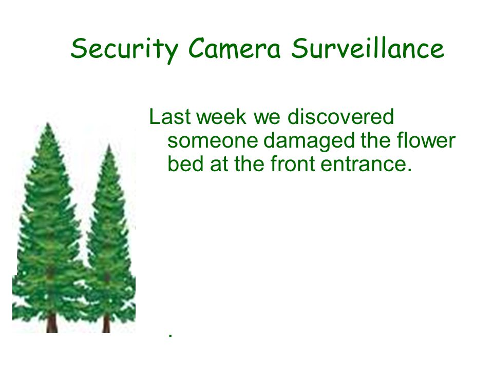 Security Camera Surveillance Last week we discovered someone damaged the flower bed at the front entrance..