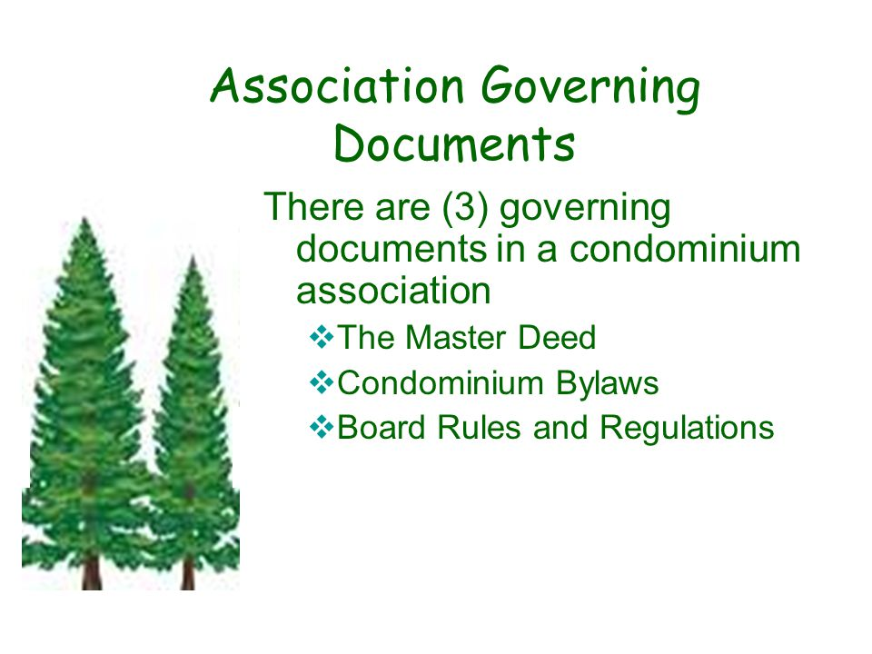 Association Governing Documents There are (3) governing documents in a condominium association  The Master Deed  Condominium Bylaws  Board Rules and Regulations.