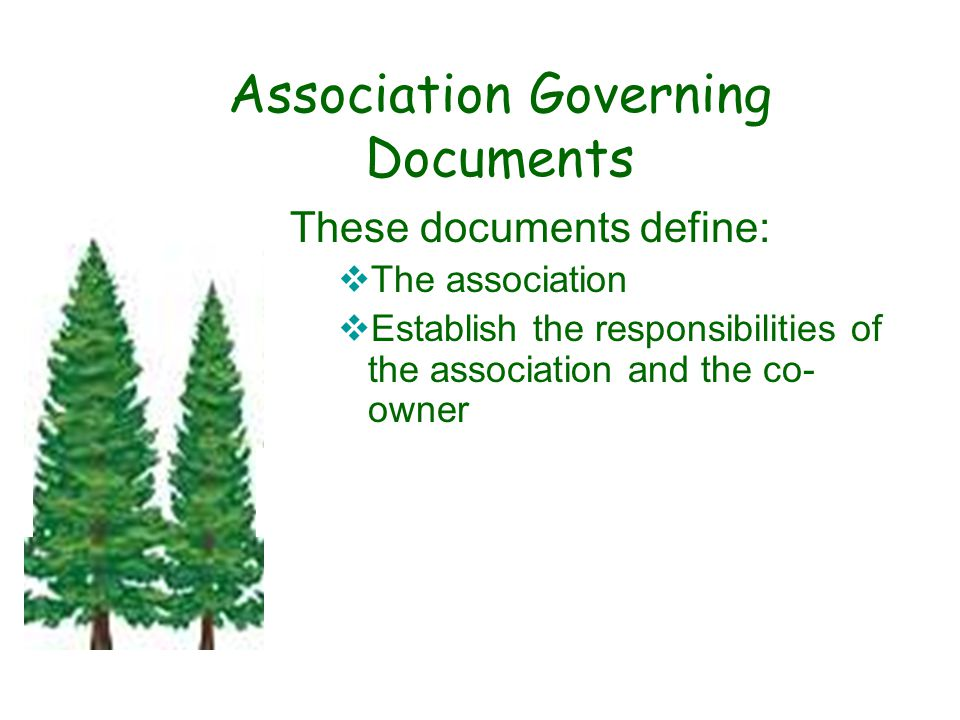 Association Governing Documents These documents define:  The association  Establish the responsibilities of the association and the co- owner.