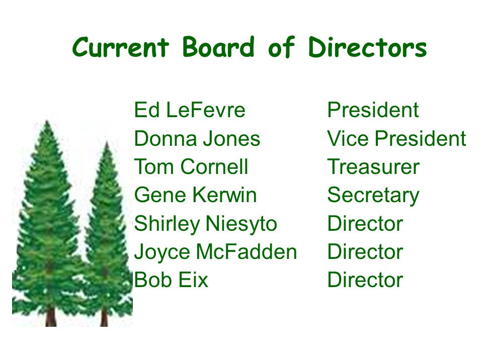 Current Board of Directors Ed LeFevrePresident Donna JonesVice President Tom CornellTreasurer Gene KerwinSecretary Shirley Niesyto Director Joyce McFaddenDirector Bob EixDirector State of the Association - –Roof Replaceme nts –Unit painting –Deck staining –Concrete replaceme nt –Changes for 2010