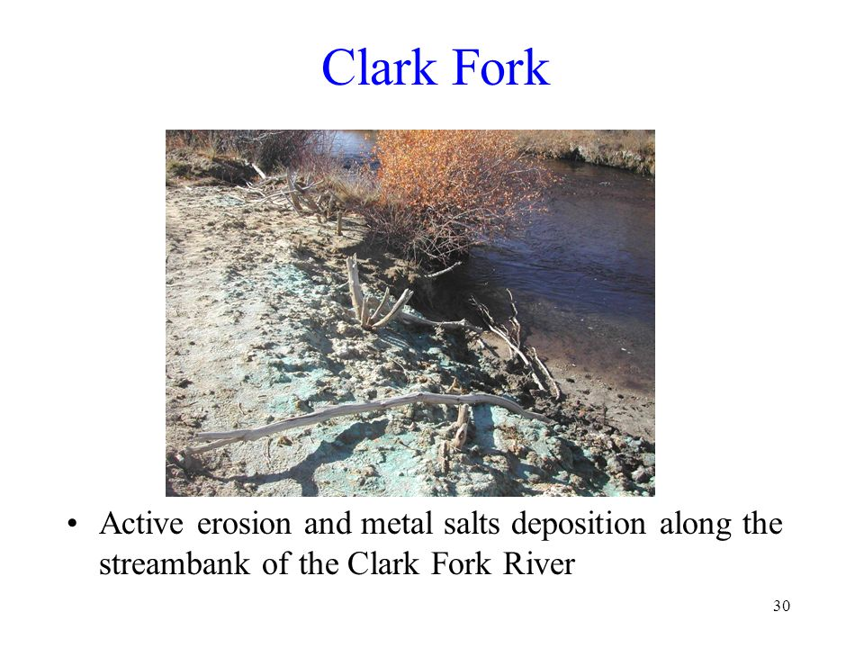 30 Clark Fork Active erosion and metal salts deposition along the streambank of the Clark Fork River