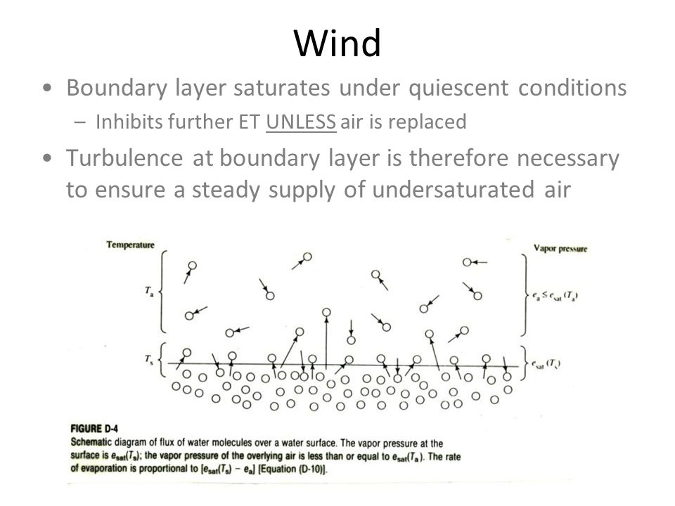 Wind Boundary layer saturates under quiescent conditions –Inhibits further ET UNLESS air is replaced Turbulence at boundary layer is therefore necessary to ensure a steady supply of undersaturated air