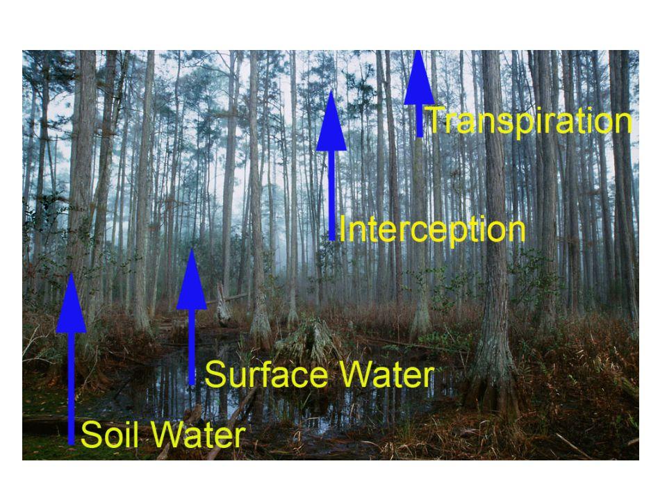 Evapotranspiration has Multiple Components