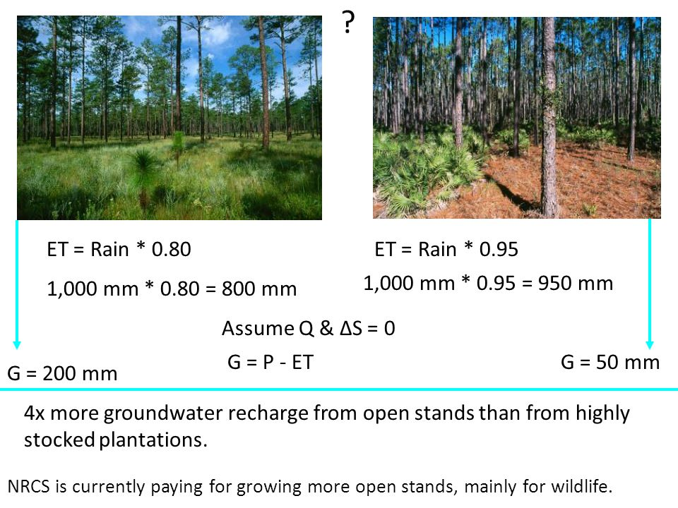 ET = Rain * 0.80ET = Rain * 0.95 1,000 mm * 0.80 = 800 mm 1,000 mm * 0.95 = 950 mm Assume Q & ΔS = 0 G = 200 mm G = 50 mm 4x more groundwater recharge