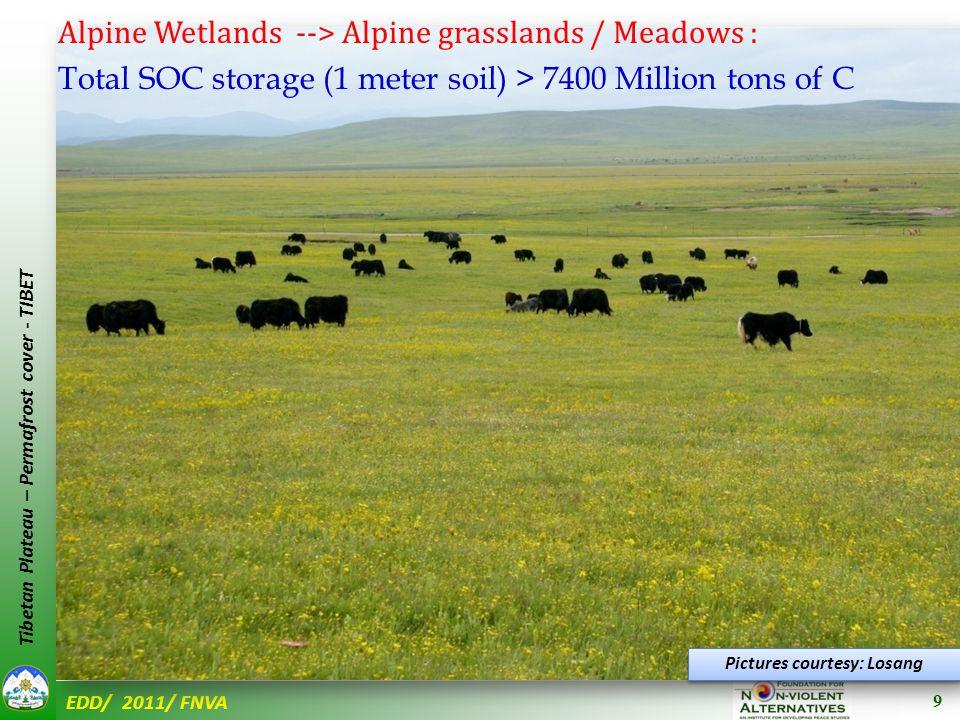 EDD/ 2011/ FNVA Tibetan Plateau – Permafrost cover - TIBET Pictures courtesy: Losang 10
