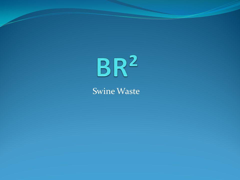 Swine Waste
