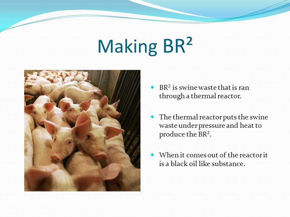 Making BR² BR² is swine waste that is ran through a thermal reactor.