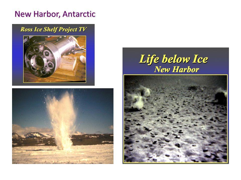New Harbor, Antarctic