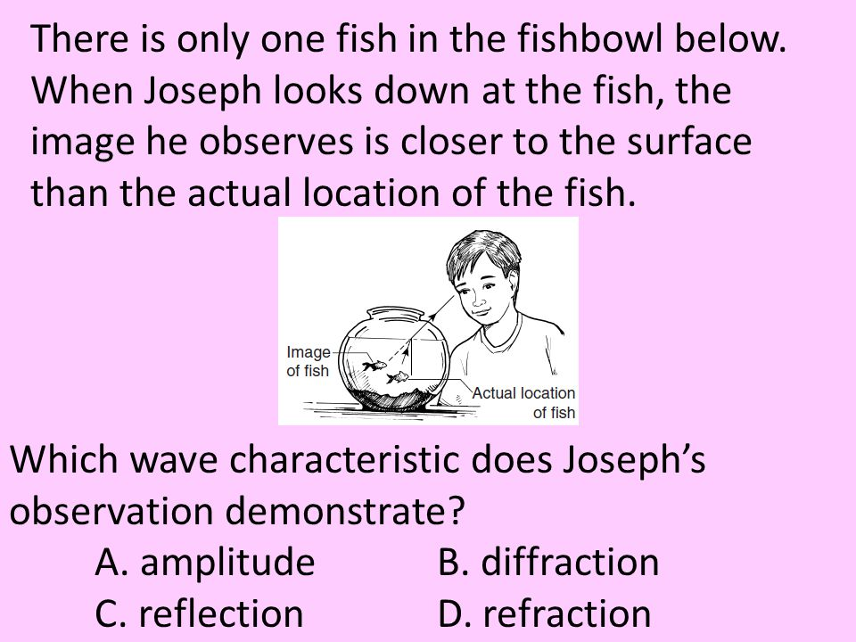 There is only one fish in the fishbowl below. When Joseph looks down at the fish, the image he observes is closer to the surface than the actual locat
