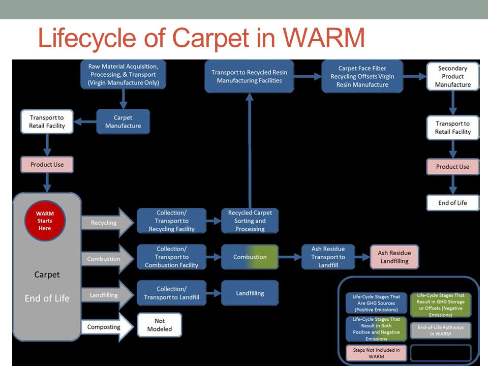 Lifecycle of Carpet in WARM
