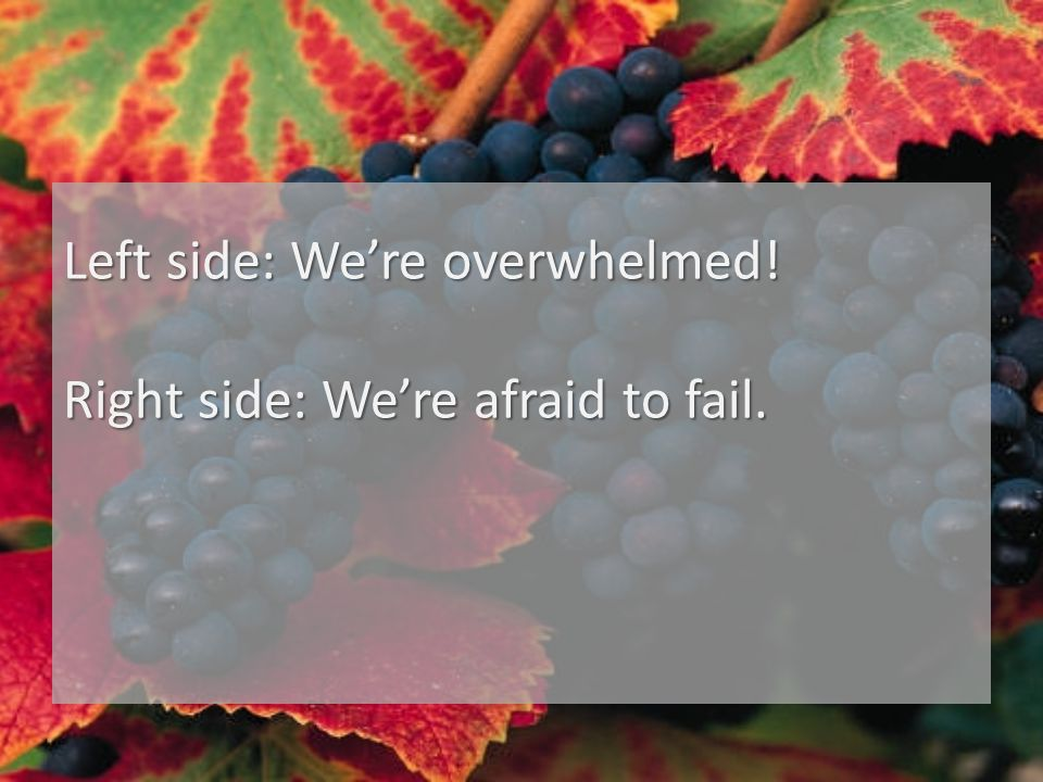 Left side: We're overwhelmed! Right side: We're afraid to fail.