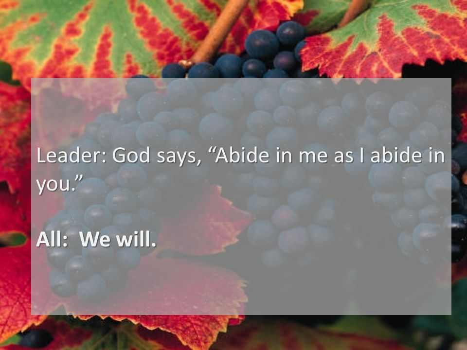 Leader: God says, Abide in me as I abide in you. All: We will.