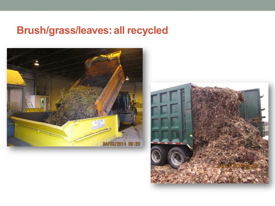 Brush/grass/leaves: all recycled