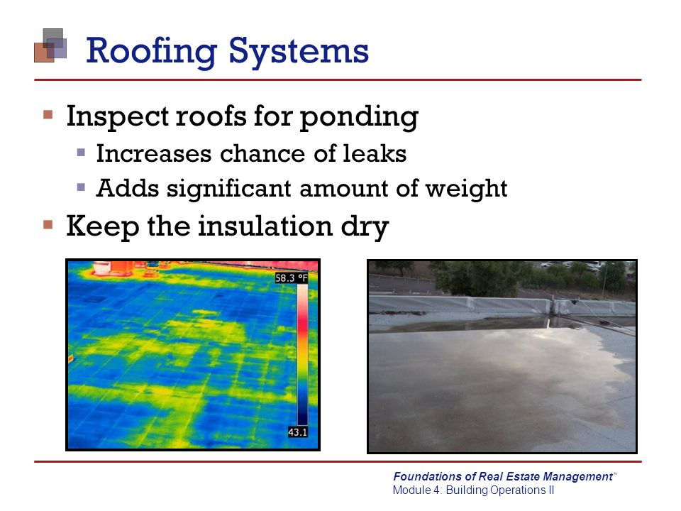 Foundations of Real Estate Management Module 4: Building Operations II TM Roofing Systems  Inspect roofs for ponding  Increases chance of leaks  Ad