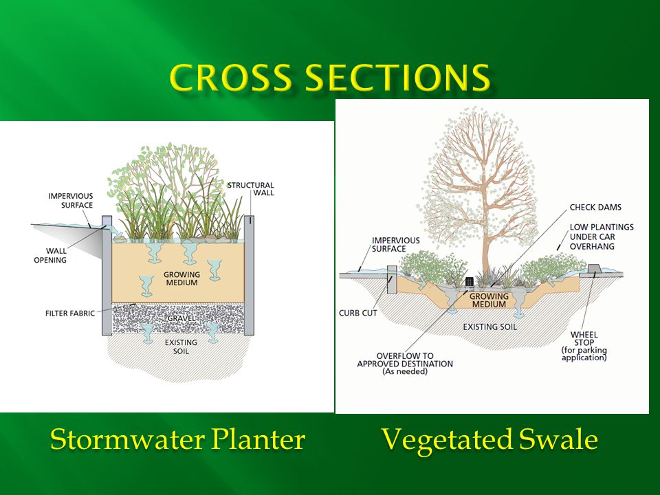 Stormwater Planter Vegetated Swale