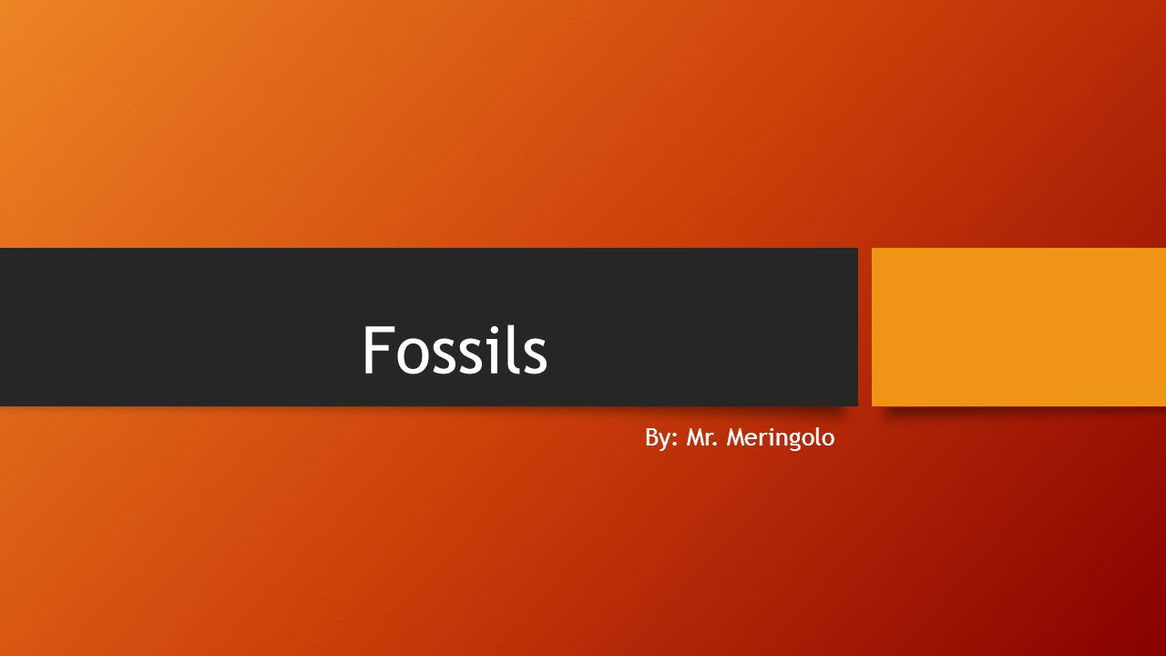 Fossils By: Mr. Meringolo