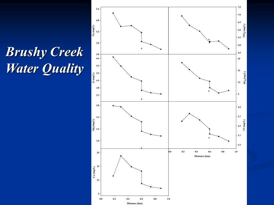 Brushy Creek Water Quality