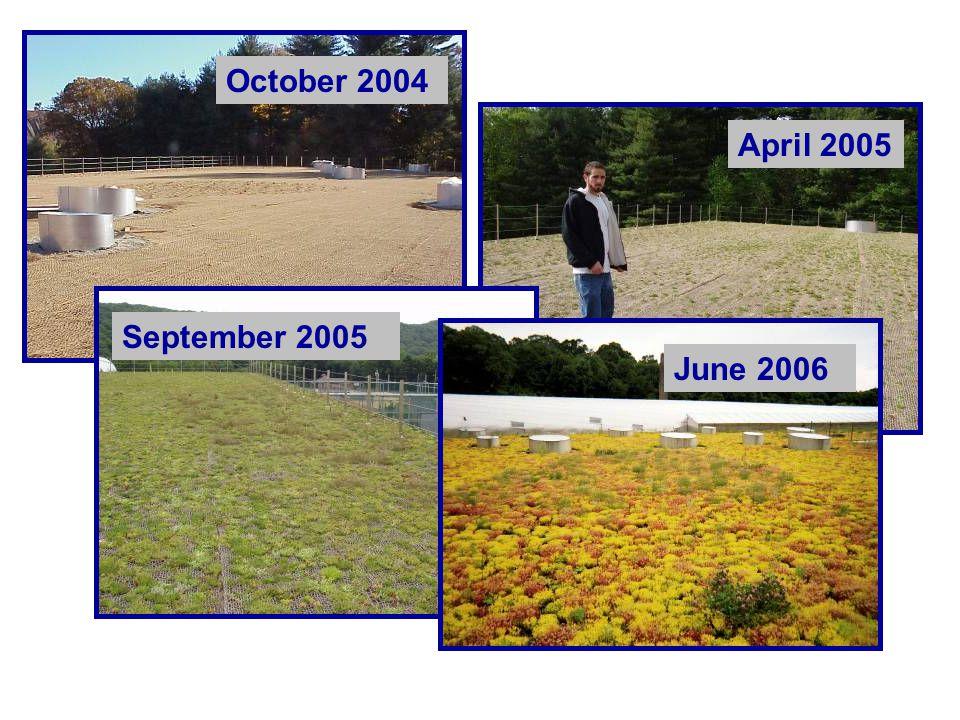 October 2004 April 2005 September 2005 June 2006