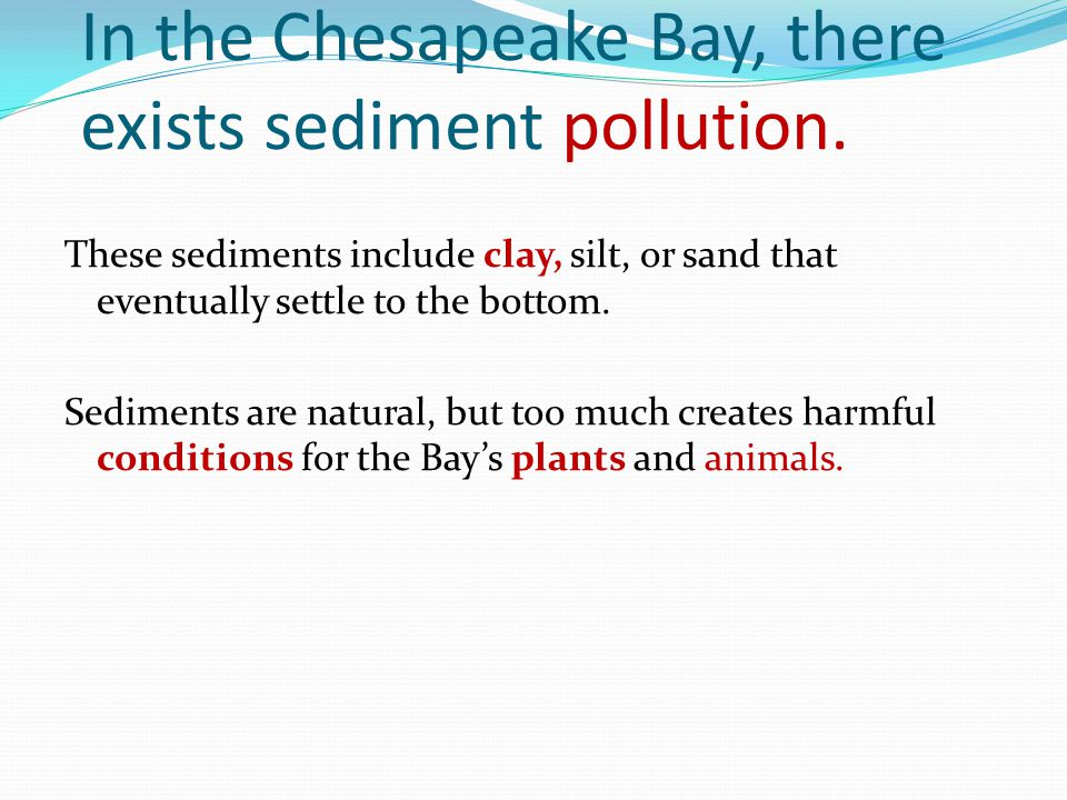 In the Chesapeake Bay, there exists sediment pollution. These sediments include clay, silt, or sand that eventually settle to the bottom. Sediments ar