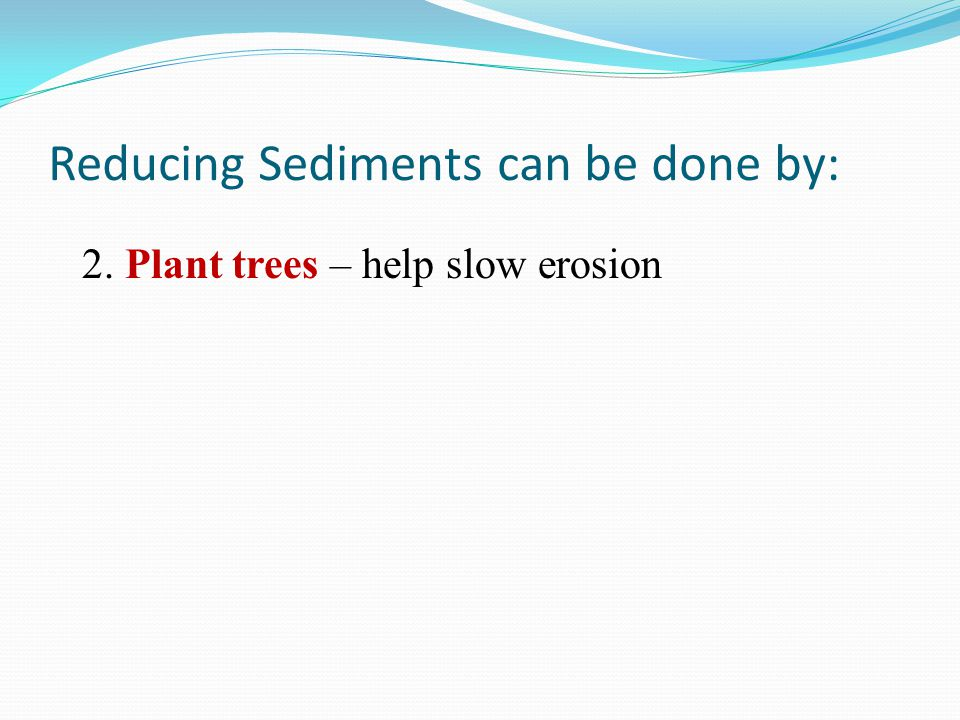 Reducing Sediments can be done by: 2. Plant trees – help slow erosion