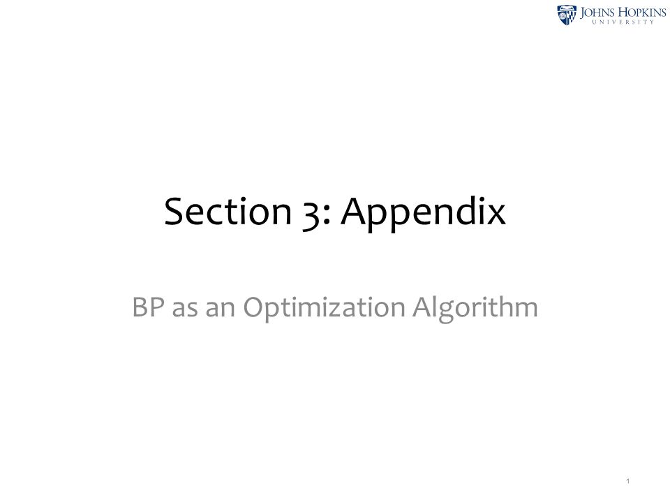 This Appendix provides a more in-depth study of BP as an optimization algorithm.