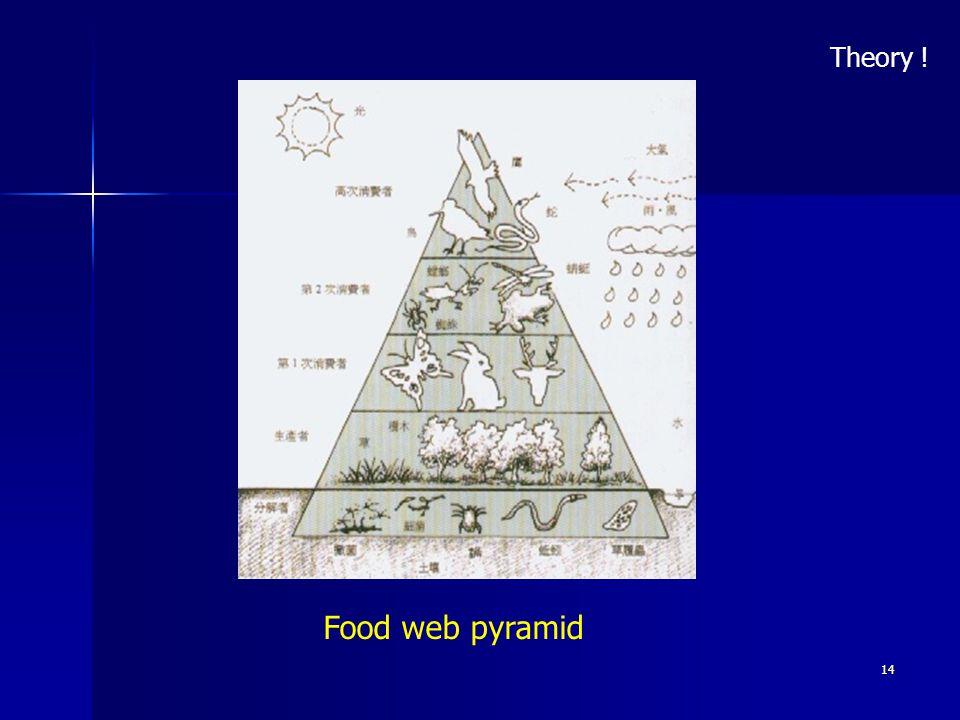 14 Food web pyramid Theory !