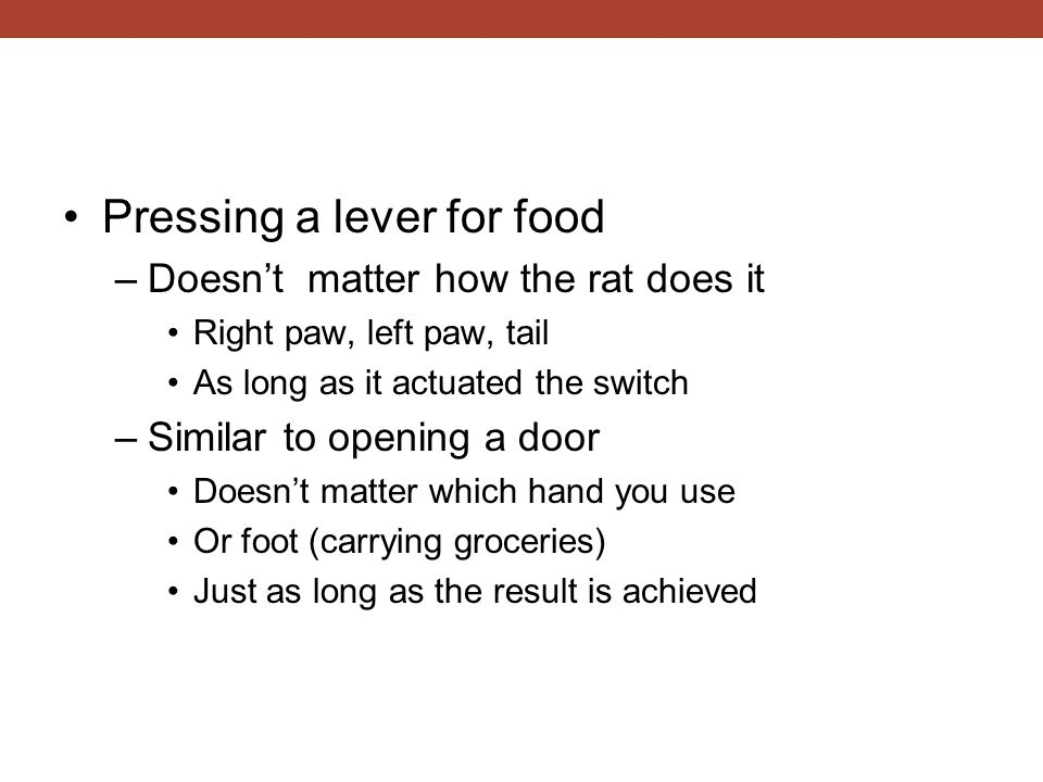 Pressing a lever for food –Doesn't matter how the rat does it Right paw, left paw, tail As long as it actuated the switch –Similar to opening a door Doesn't matter which hand you use Or foot (carrying groceries) Just as long as the result is achieved