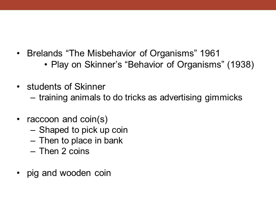 "Brelands ""The Misbehavior of Organisms"" 1961 Play on Skinner's ""Behavior of Organisms"" (1938) students of Skinner –training animals to do tricks as ad"