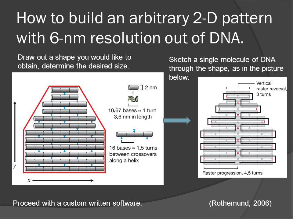 How to build an arbitrary 2-D pattern with 6-nm resolution out of DNA.