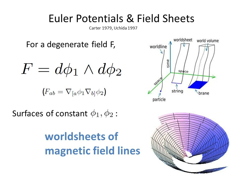 Euler Potentials & Field Sheets Surfaces of constant : worldsheets of magnetic field lines For a degenerate field F, Carter 1979, Uchida 1997 ( )