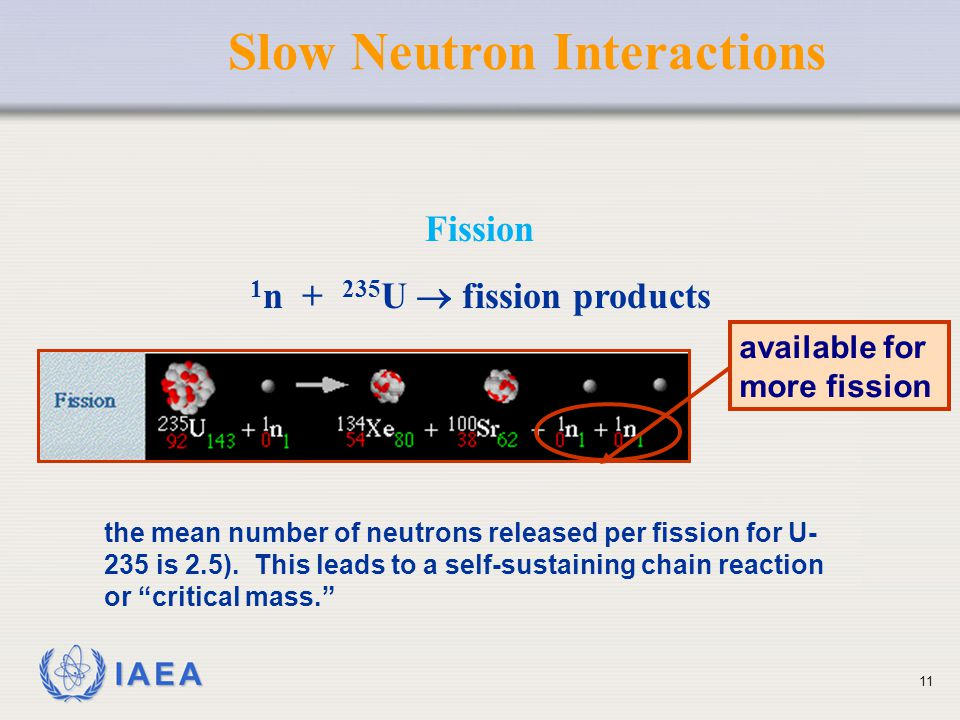 IAEA Fission 1 n + 235 U  fission products available for more fission Slow Neutron Interactions the mean number of neutrons released per fission for
