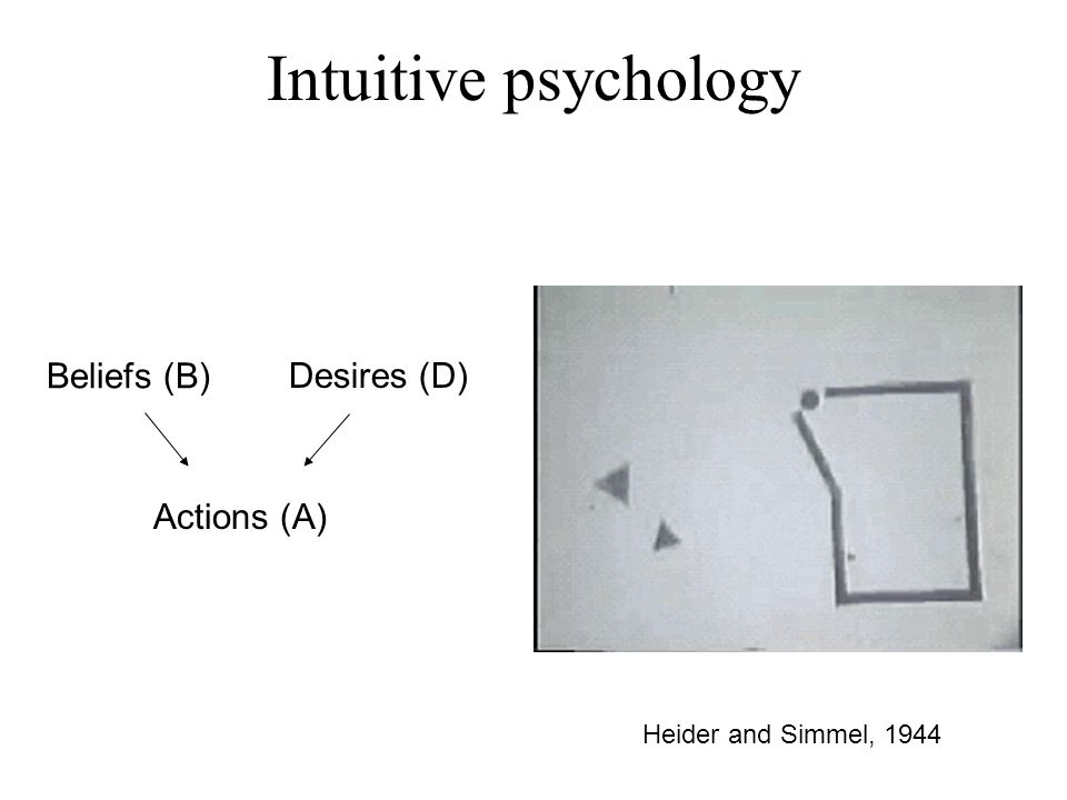 Heider and Simmel, 1944 Intuitive psychology Beliefs (B) Desires (D) Actions (A)
