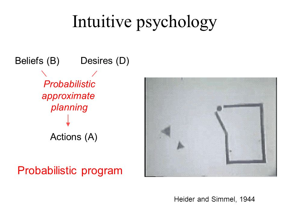 Heider and Simmel, 1944 Intuitive psychology Beliefs (B) Desires (D) Actions (A) Probabilistic approximate planning Probabilistic program