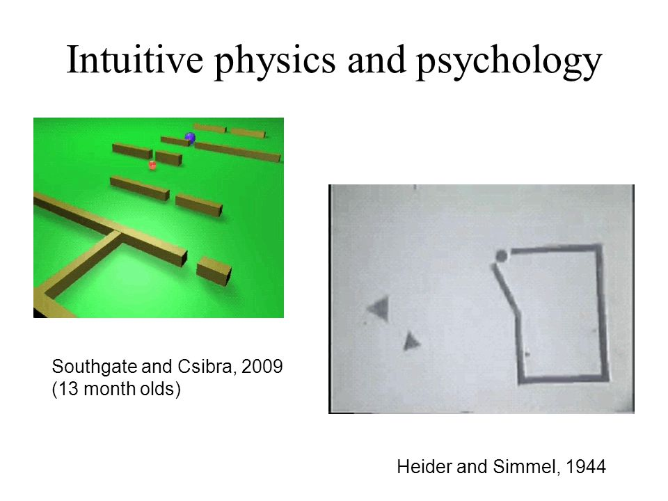 Heider and Simmel, 1944 Southgate and Csibra, 2009 (13 month olds) Intuitive physics and psychology