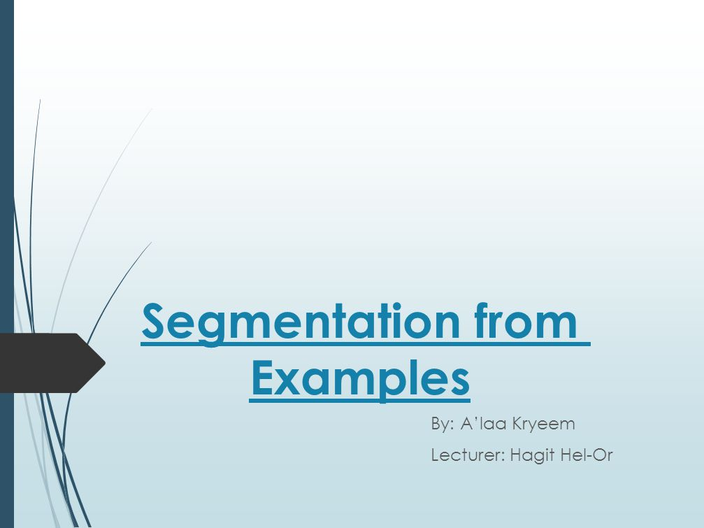 Segmentation from Examples By: A'laa Kryeem Lecturer: Hagit Hel-Or