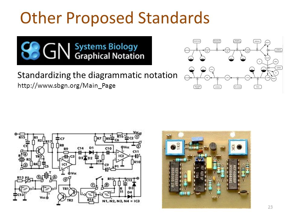 Other Proposed Standards Standardizing the diagrammatic notation http://www.sbgn.org/Main_Page 23